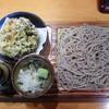 そば処 味奈登庵 - 料理写真:鰆と旬野菜のかき揚げつけそば