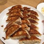 84902501 - 焼き餃子