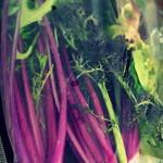 84930704 - 別売り野菜