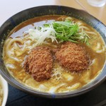 豊浜サービスエリア(上り) レストラン 千登世 - ひれかつ濃旨カレーうどん
