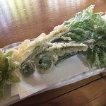 蕎麦正 まつい - 山菜天ぷら 一番左がフキノトウです