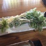 蕎麦正 まつい - 山菜天ぷら お塩でいただきます