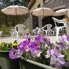 大山レークホテル - 料理写真:ガーデンテラス席