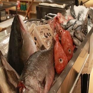 旬な鮮魚※毎日『築地市場』から仕入れてます♪