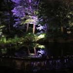 アマデウス - 外の夜景