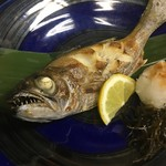 樂旬堂 坐唯杏 - 坐唯杏イチオシの魚「モツゴ」はムツの若魚。ノドグロと同種とあって旨味は抜群!