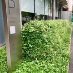 Cafe 椿 - 美術館前の小花