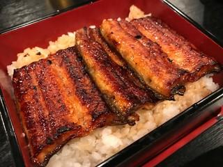 うなぎ藤田 浜松駅前店 - 身の柔らかさ・脂・焼き目の三拍子がそろったうな重。美味でした。