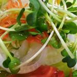 トミーナ - サラダを和風ドレッシングで。