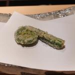 にい留 - 雁足(こごみの特別品種)