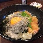 鼓や - 一番人気らしい…生しらすと鯛のうず潮丼¥1200