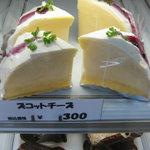 8536024 - 「魔法の樹」 ズコットチーズ