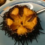 横綱寿司 -