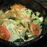 麺屋 熊野古道 - 冷やしサラダ麺