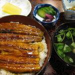 うなぎ・てんぷら 魚とめ - 料理写真:うな丼