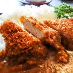 味波 - 豚ヒレかつカレー(日替りランチ)
