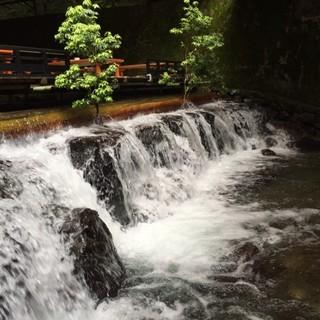 【納涼川床のご案内】6月2日~9月24日開催