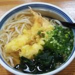 手打ちうどん 田じま - 料理写真:着丼! 細かい刻み青ネギ、苦味や辛みが出にくいから好き