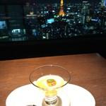 85582893 - 東京タワー独り占め状態