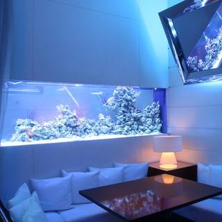 新宿の海は雰囲気抜群!2名様用半個室&海底個室&大水槽フロア