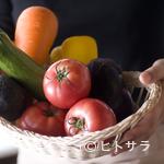 カフェ&バル スプラウト - 野菜ソムリエが厳選した糸島産・有機野菜