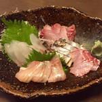 へちもん - 料理写真:しまあじ・やがら・いさき・鰆炙り・コショウ鯛