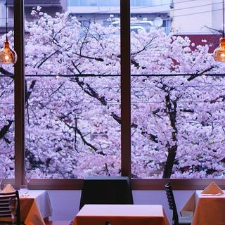 窓の外は、満面の桜!桜の名所・目黒川沿いの2階の店舗