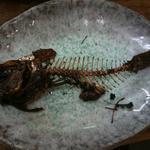 ビアカウンターちょこっと - 広島竹原港の小鯛の骨せんべい