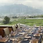 レストラン鳥居平 - 窓の外に広がるぶどう畑