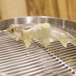 てんぷら 下村 - 料理写真: