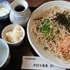 手打ち蕎麦わ - 料理写真:おろし蕎麦 大盛 950円+250円