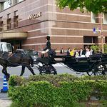 85732478 - ウェスティンホテルの馬車