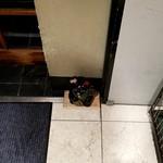 85734758 - 黒い招き猫