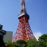 85762994 - 敷地内から見上げる東京タワー