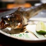 日本料理 晴山 - 天然アマゴ