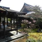 ともしび - 仁和寺庭園