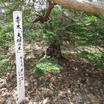 カフェ アトリエ おくむら - 夫婦の木