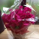 BOUTIQUE chihiro - 母の日の花