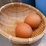 丸花 - 半熟ゆで卵