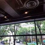 スターバックス・コーヒー - 店内から公園通り側を臨む