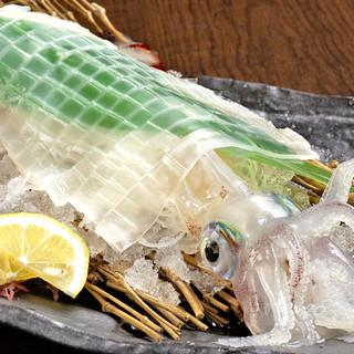 毎日新鮮!季節を彩る旬の海の幸から野菜まで贅沢に味わう!