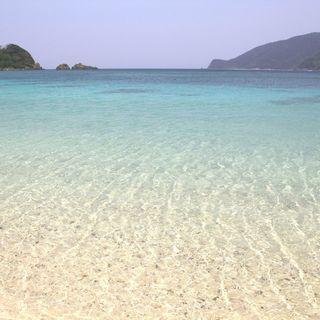 ミネラルと旨味が詰まる、自然豊かな奄美大島のサンゴ塩