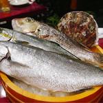 86094792 - 活魚