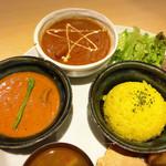 SPICE GARDEN - 野菜カレーとチキンカレー