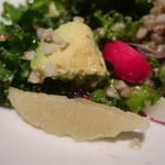 crisscross - スプラウト、グレープフルーツのハーブサラダ