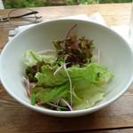ペペチーノ - セットのサラダ