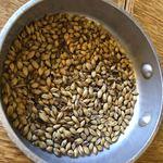 ニホンバシ・ブルワリー - 麦芽ローストのおつまみ