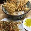 豊野丼 - 料理写真:はぜ?の天丼にやりいかのアネックス