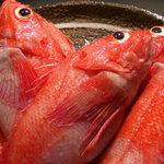 串あげ太郎 - 北海道の高級魚キンキ