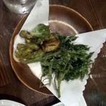 生駒 - 山菜の天ぷら(タラの芽・よもぎ)